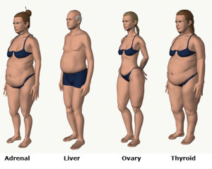 You will learn what Body Type you are…