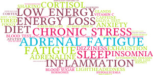 Adrenal Fatigue image